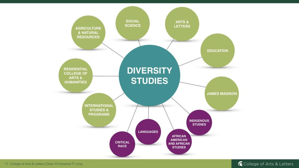 Graphic of the different sections of Diversity Studies