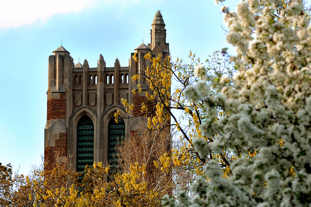 Photo of MSU's Beaumont tower against a blue sky with two trees in front of it
