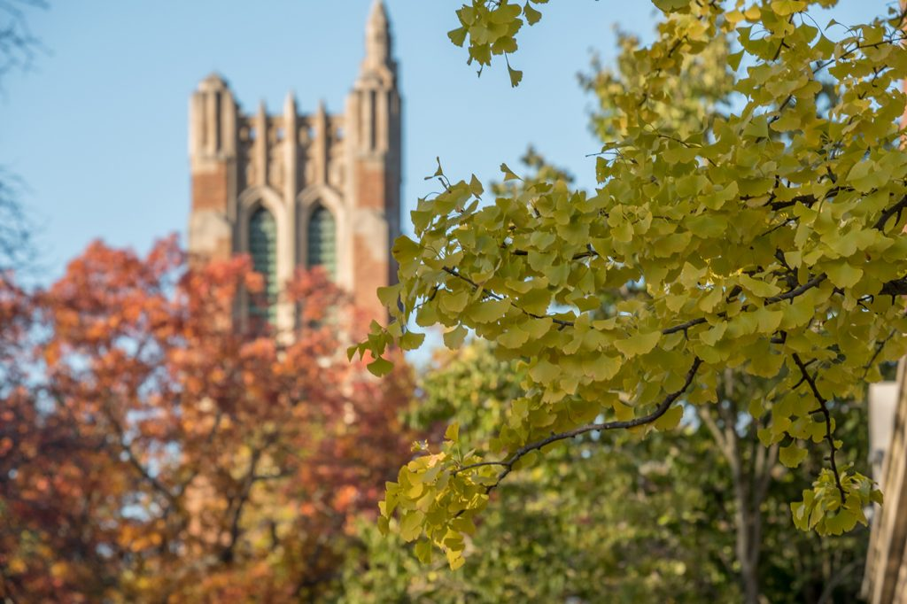 Beaumont Tower in background of nature shot