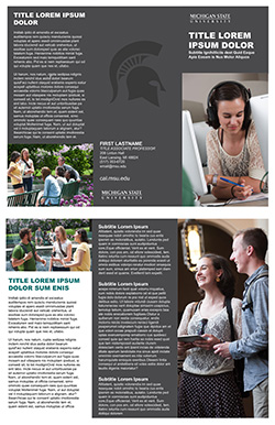 Graphic showing a mockup of the first trifold brochure template in official MSU branding