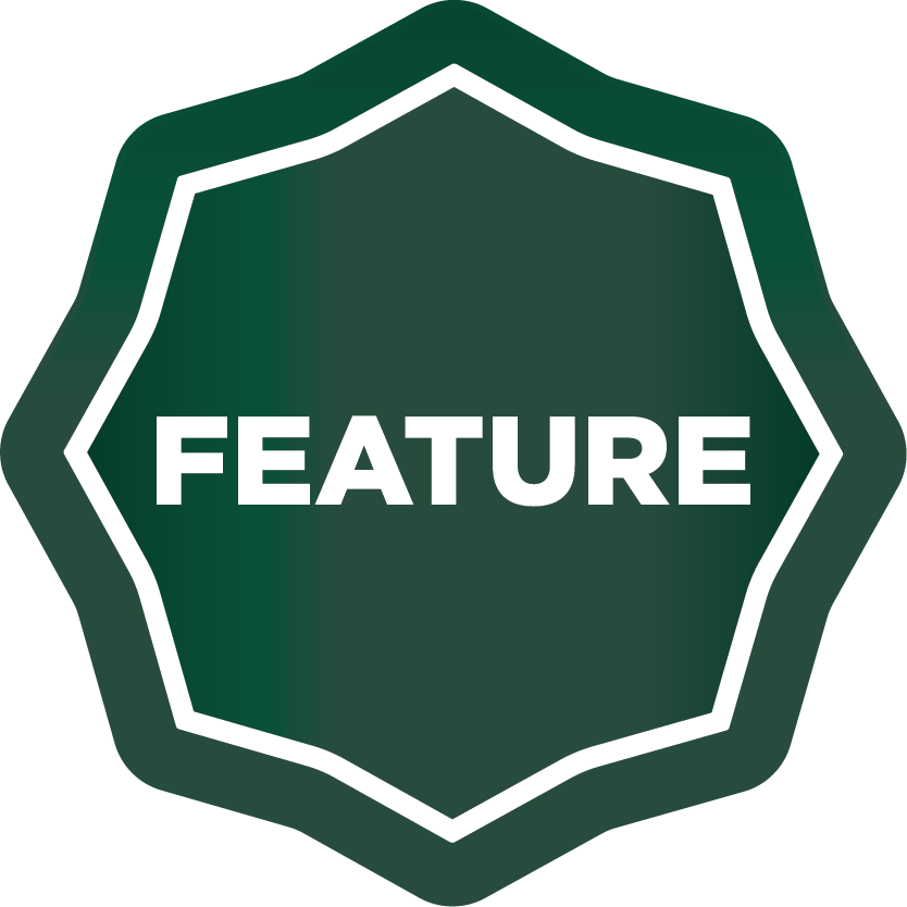 icon of a feature badge