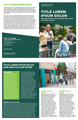 Graphic showing a mockup of the first bifold brochure template in official MSU branding