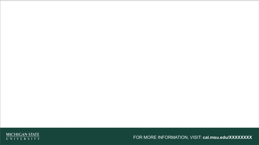 Graphic showing a mockup of the TV ad blank template in official MSU branding