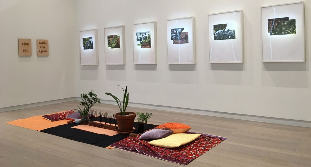Room with white walls and art hanging up, pillows, cushions, and plants on the ground